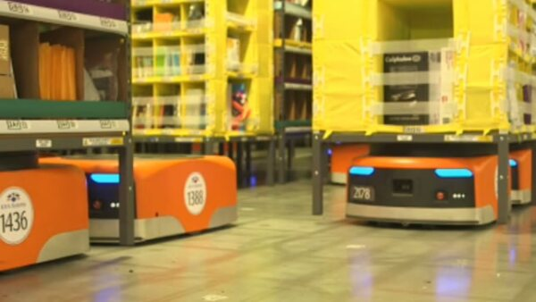 """Los Kiva pesan 149 kilos y son capaces de cargar hasta 320 kilos sobre sus """"espaldas"""""""