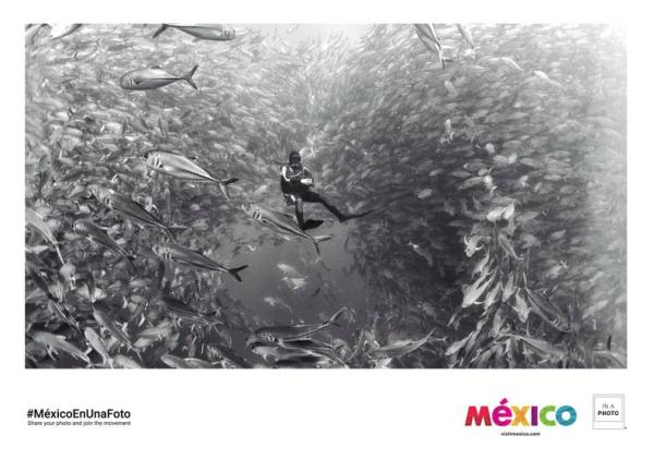 'Visit Baja California Sur'.