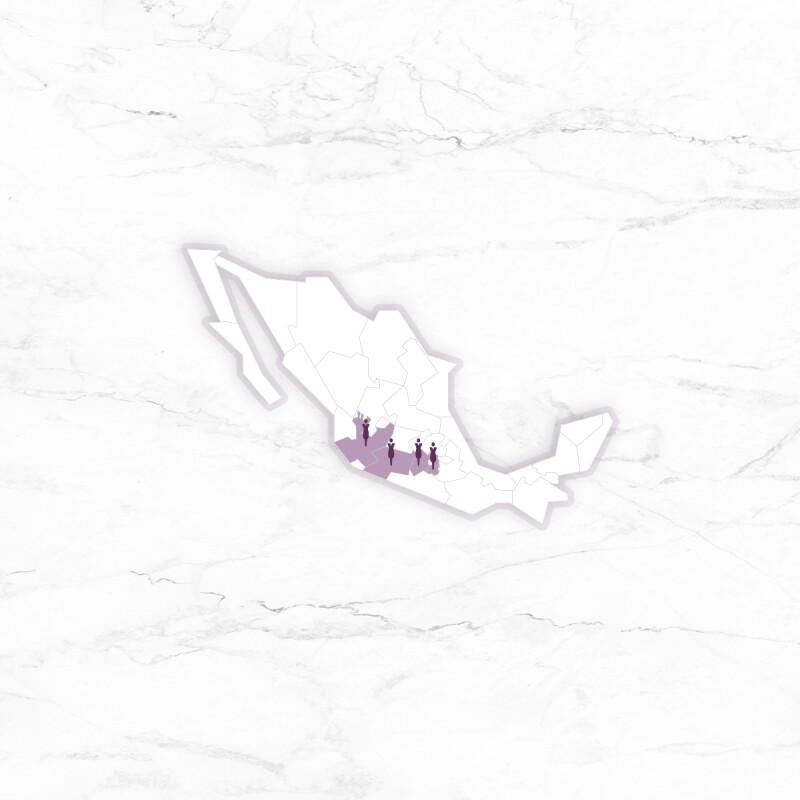 La alerta de violencia de género se aplica desde el gobierno federal en Morelos, Estado de México y Michoacán, y a nivel estatal en Jalisco.