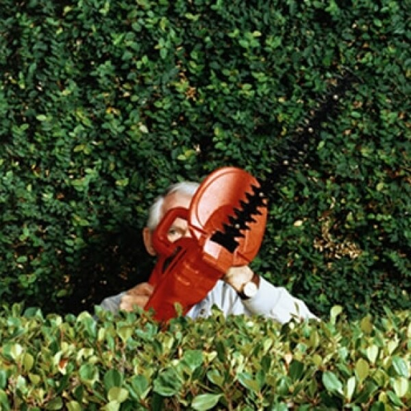 chainsaw sierra electrica jardin jardineria