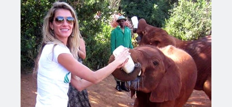Durante un viaje a Kenya, Gisele se encargó de alimentar a varios elefantes bebé.