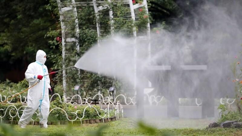 Un hombre fumiga el parque Yoyogi Park
