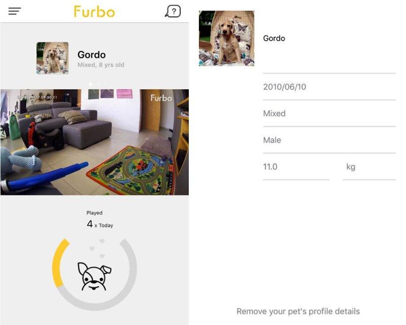 Look and Feel de Furbo