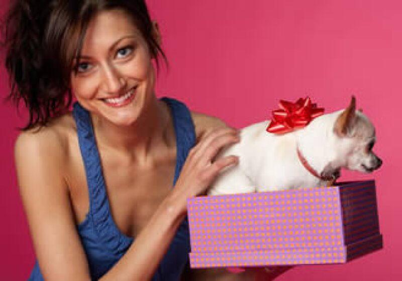 Al regalar una mascota debes considerar primero que tendrá un buen lugar para vivir. (Foto: Jupiter Images)