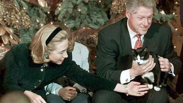Hace seis años los usuarios de redes sociales decidieron que el 20 de febrero celebrarían a los mininos, en honor a Socks, el gatito de la hija del expresidentes de Estados Unidos.