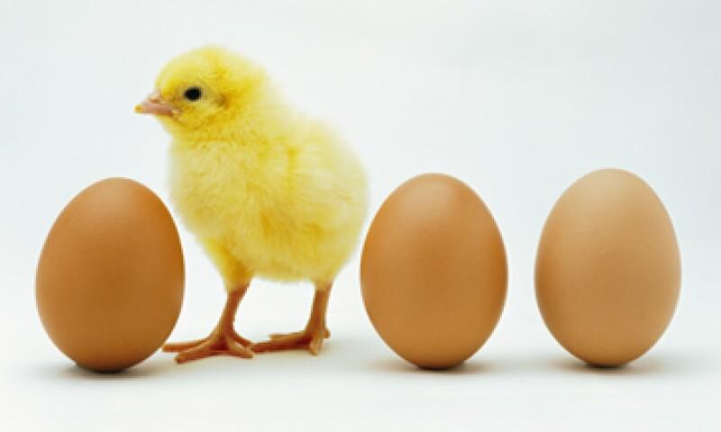 La empresa vendió 634.5 mdp de huevos y 7,894.4 mdp de pollo. (Foto: Thinkstock)