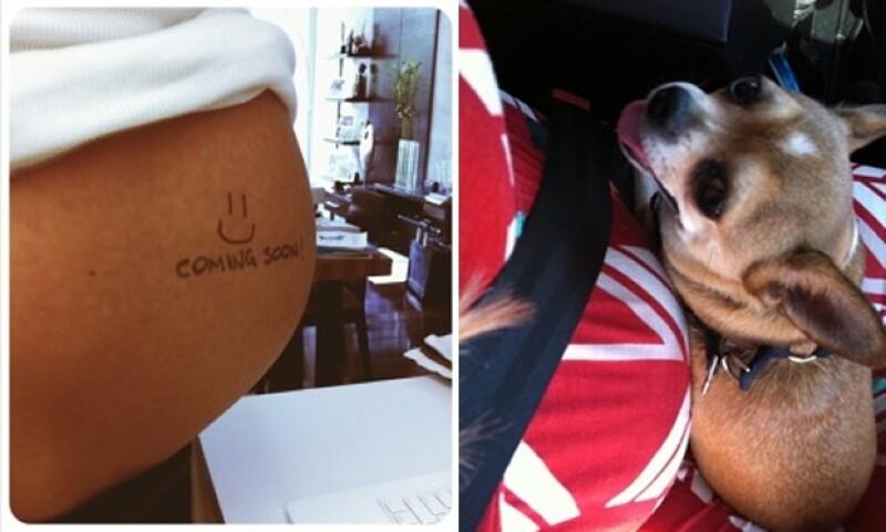 Aquí su pancita y en la foto de la izquierda vemos a Mila, su perrita.