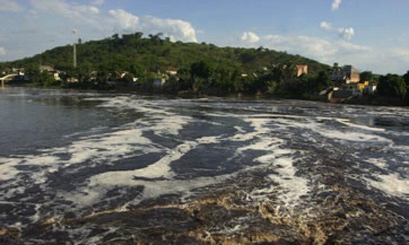 ocasionalmente aparecen cianobacterias que cubren los lagos con una capa verde que produce toxinas.  (Foto: AP)