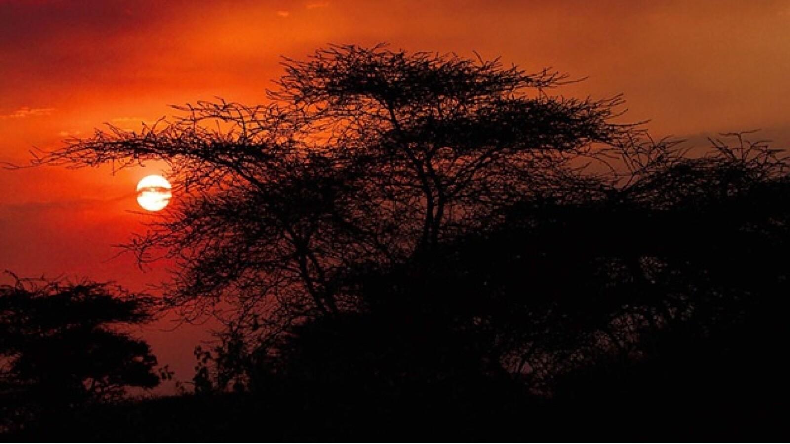 La reserva del Ngorongoro