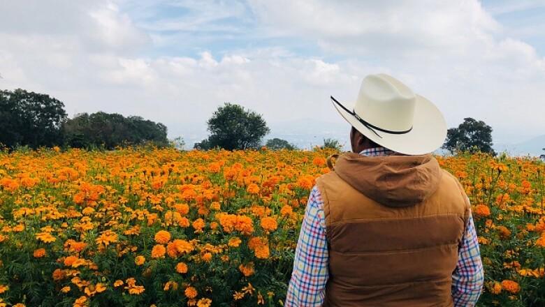 flores de cempas�chitl 6