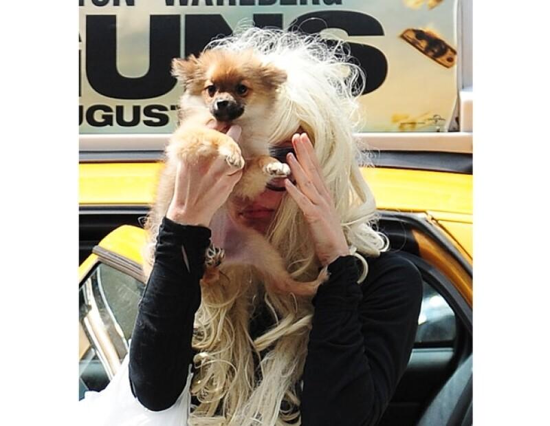 Aunque aparentemente fue sin querer, la actriz  salpicó a su mascota con combustible mientras intentaba prender una especie de fogata en el garage de una desconocida.