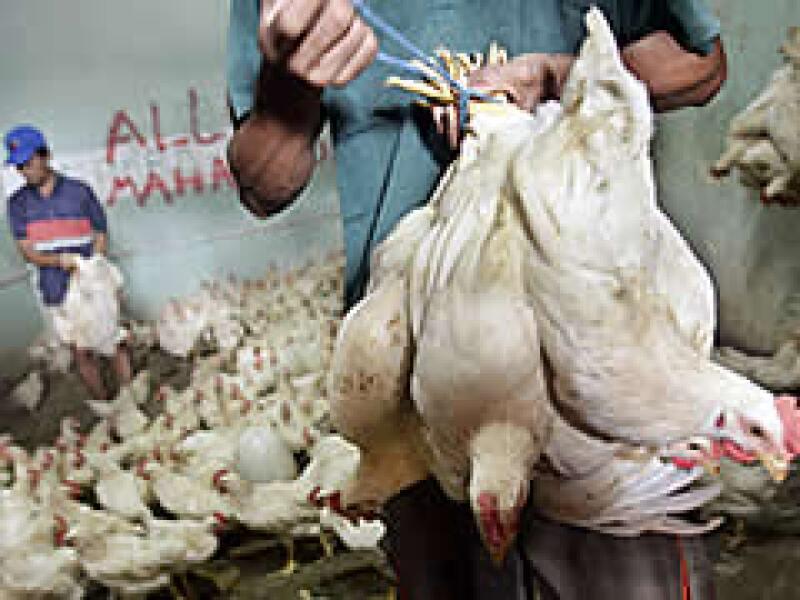 Bachoco señala que la demanda de pollo ha estado débil y esto, aunado al crecimiento de la industria, ocasionó una fuerte sobreoferta. (Foto: Archivo)