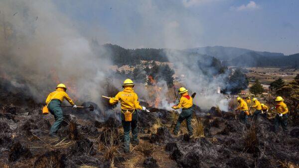 incendios forestales en mexico