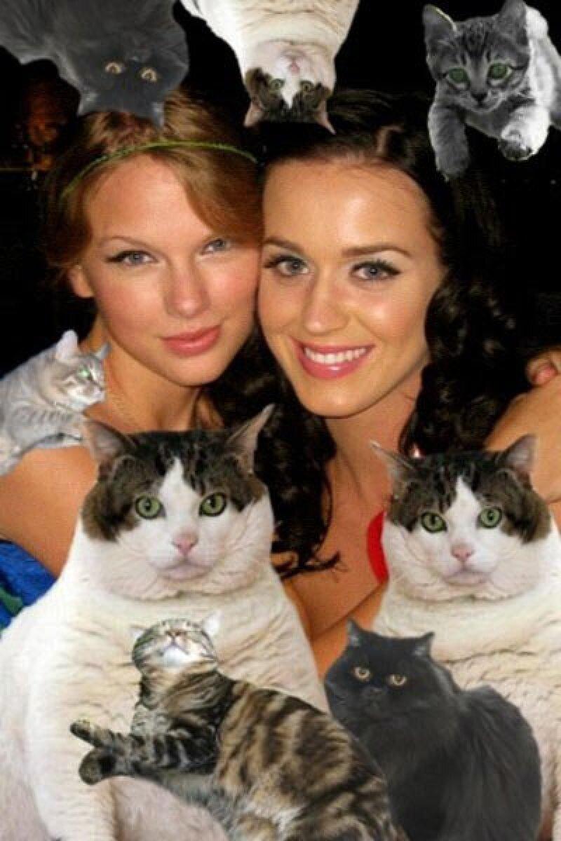 """Taylor Swift subió esta foto y escribió: """"Salir con @ katyperry es súper divertido, a excepción de la manada de gatos domésticos que la siguen."""""""