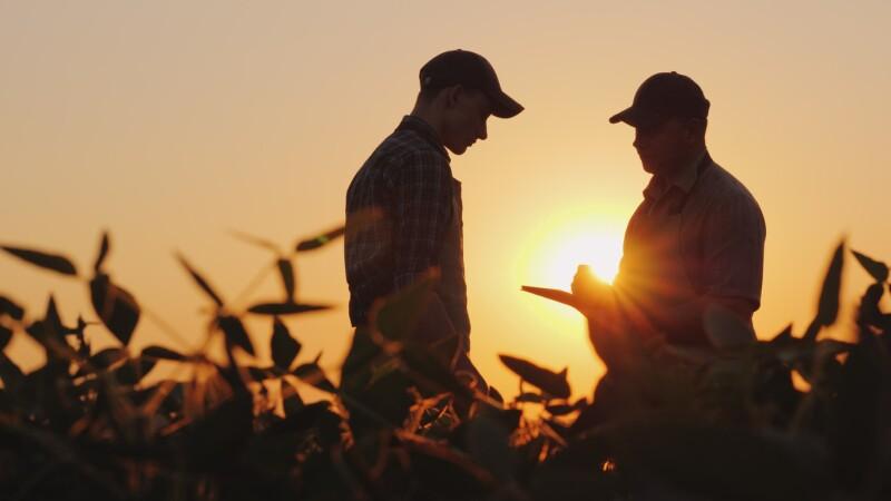 Coronavirus sector agrícola trabajadores
