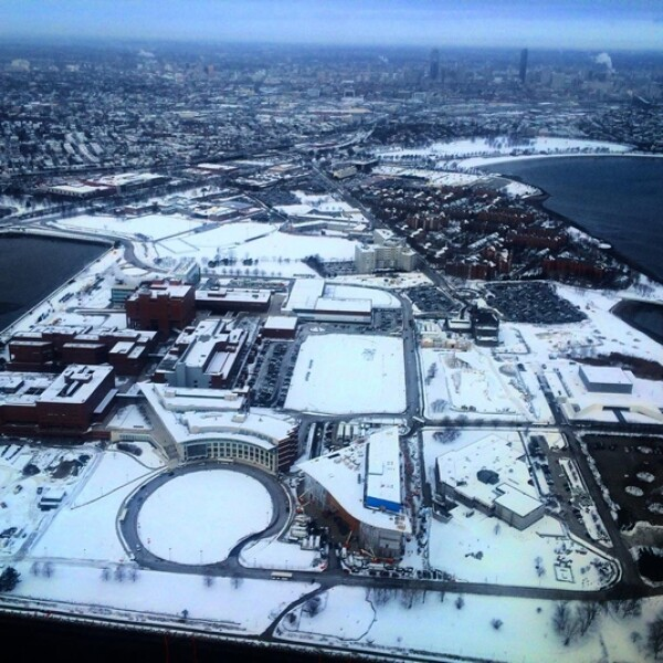 boston nieve