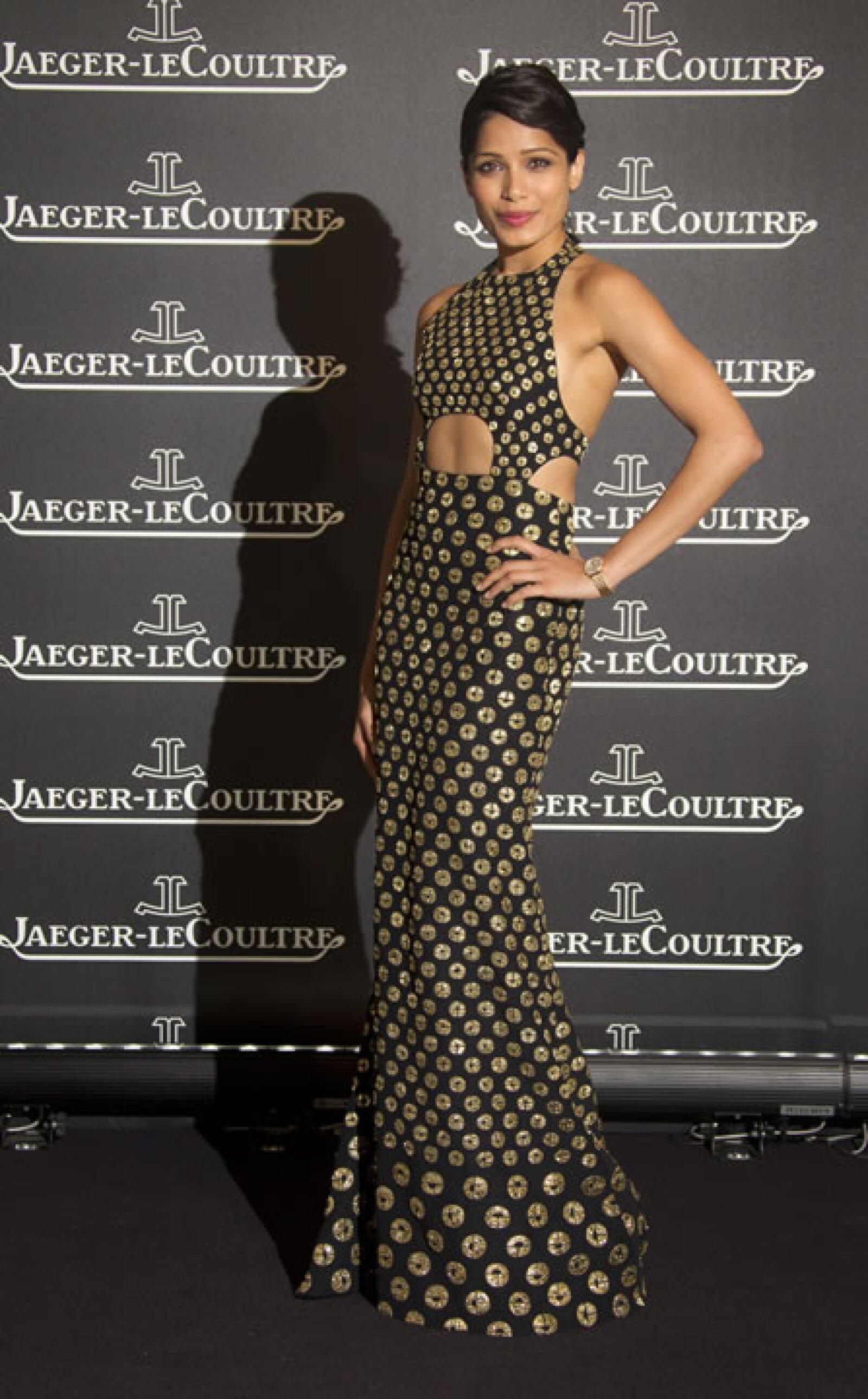 Freida Pinto en un vestido largo.