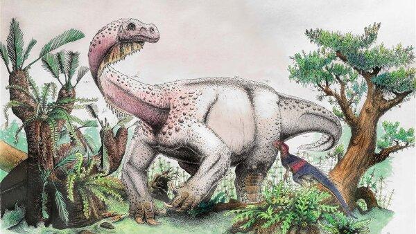 Nuevo dinosaurio, así lucía el animal más grande que caminó por el Pangea