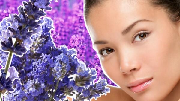 ¿Sabías que además de ser un gran tranquilizante la lavanda tiene grandes beneficios para la piel y el pelo? Te invitamos a descubrir cuáles son.