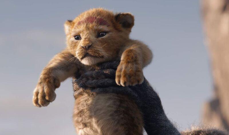 rey leon.JPG