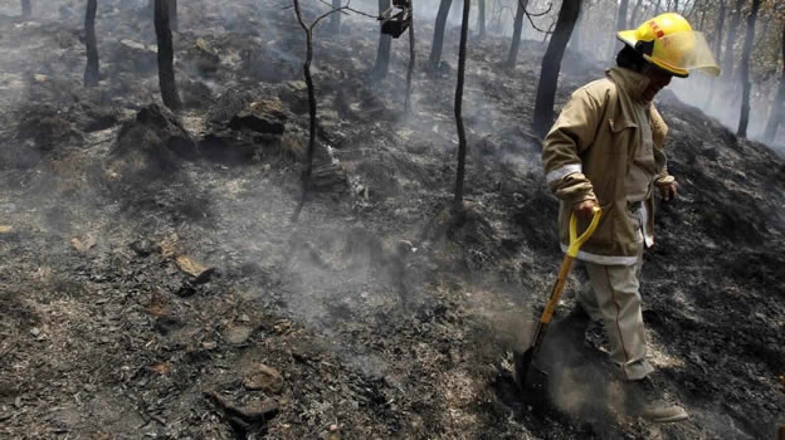 incendio bosque la primavera guadalajara jalisco