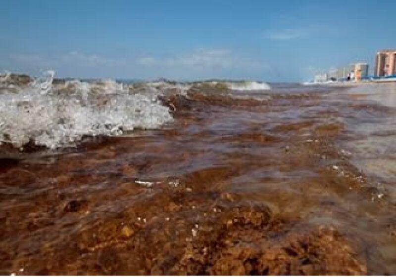 BP dijo que no podrá seguir con la recolección de petróleo en el Golfo de México durante el paso de huracanes. (Foto: AP)