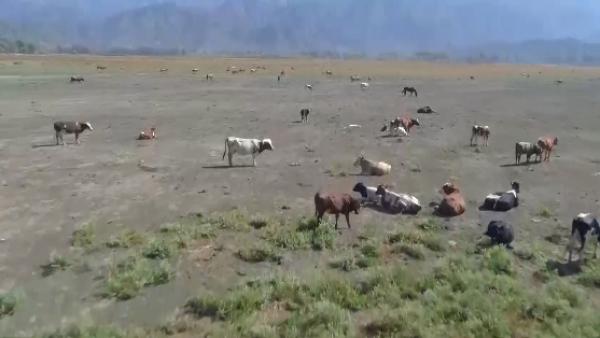 Uno de los principales atractivos turísticos de Chile está completamente seco