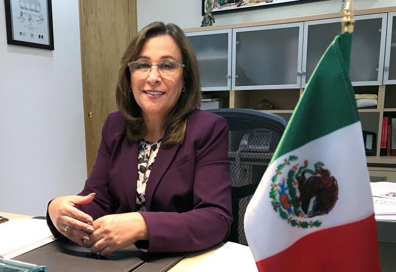 Mexican Congresswoman Rocio Nahle, top energy advisor to presidential frontrunner Andres Manuel Lopez Obrador, talks to Reuters in Mexico City