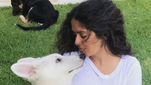 Salma Hayek celebra el Día del Perro