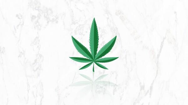 Legisladores del PRI y PVEM bloquean discusión de aumentar gramaje de marihuana, conoce cuáles otras iniciatias lo proponen.