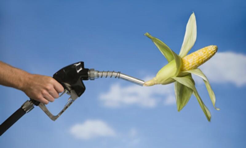 En Estados Unidos se produce el 60% de etanol del mundo. (Foto: Getty Images)