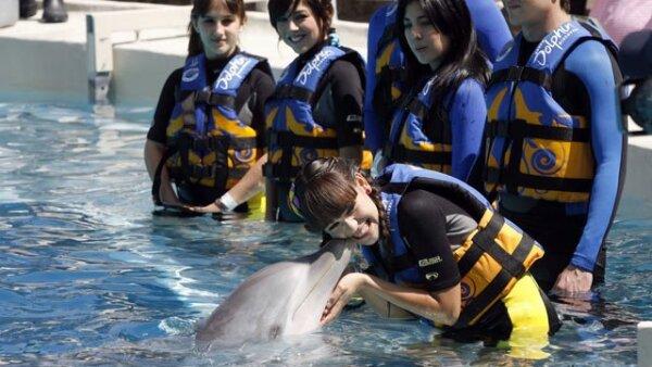Danna Paola tuvo la suerte de que uno de los delfines del espectáculo le diera un beso.