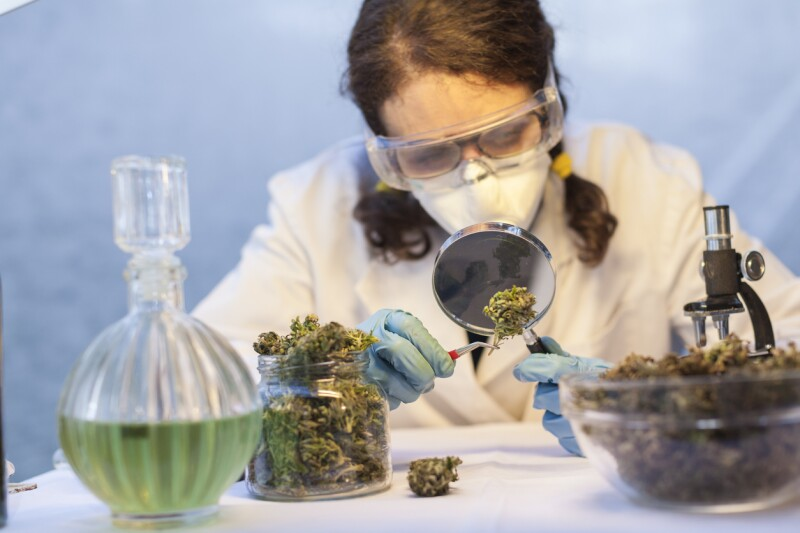 Young Woman Preparing Homeopathic Medicine from Marijuana