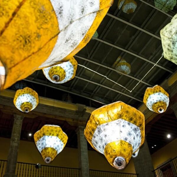 festival luces 4