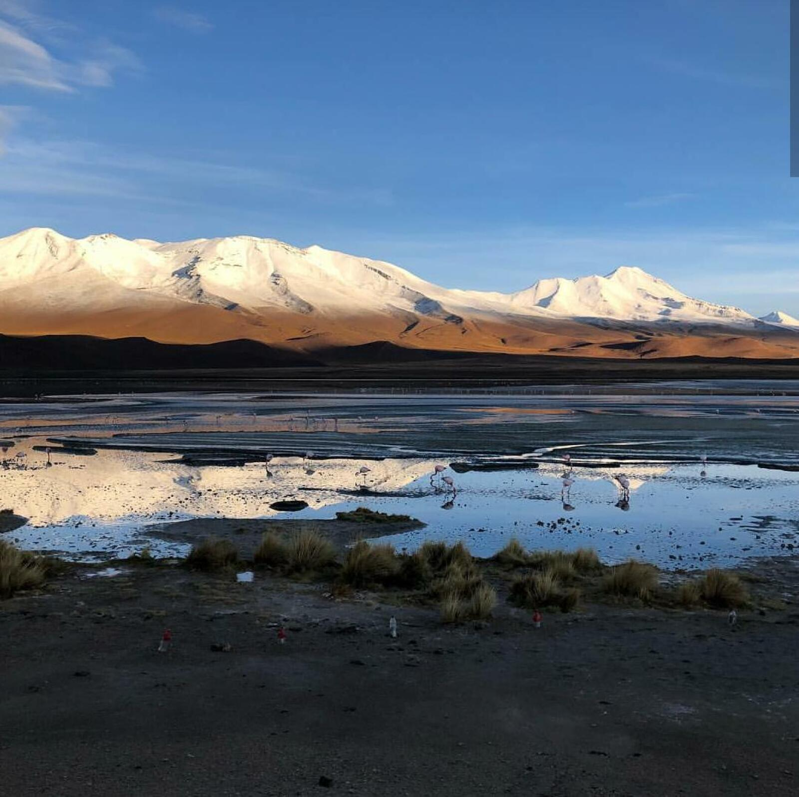 Vacaciones en Bolivia de Edith González