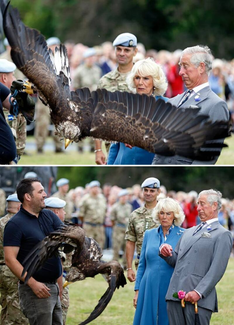 Seguida de su reacción de miedo, la pareja optó por alejarse de las inmensas alas de Zephyr.