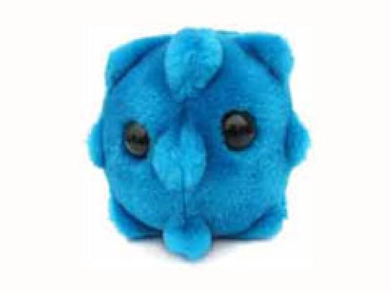 El peluche que se distribuye por Internet, es en realidad el de la gripe común. (Foto: Cortesía)