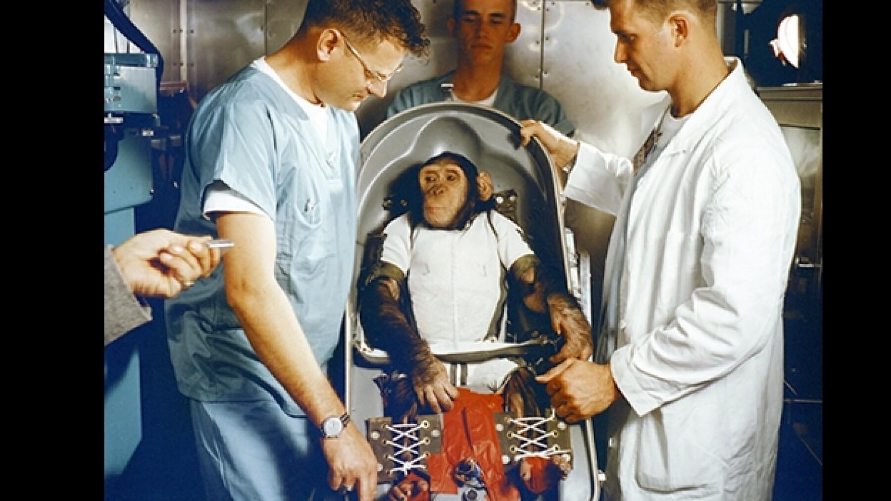 Ham chimpance NASA viajar al espacio