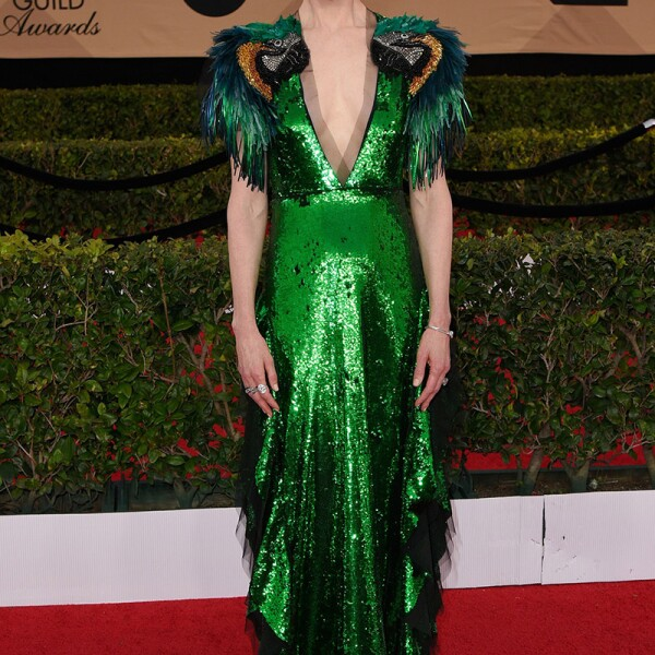 The 23rd Annual Screen Actors Guild Awards, Arrivals, Los Angeles, USA - 29 Jan 2017