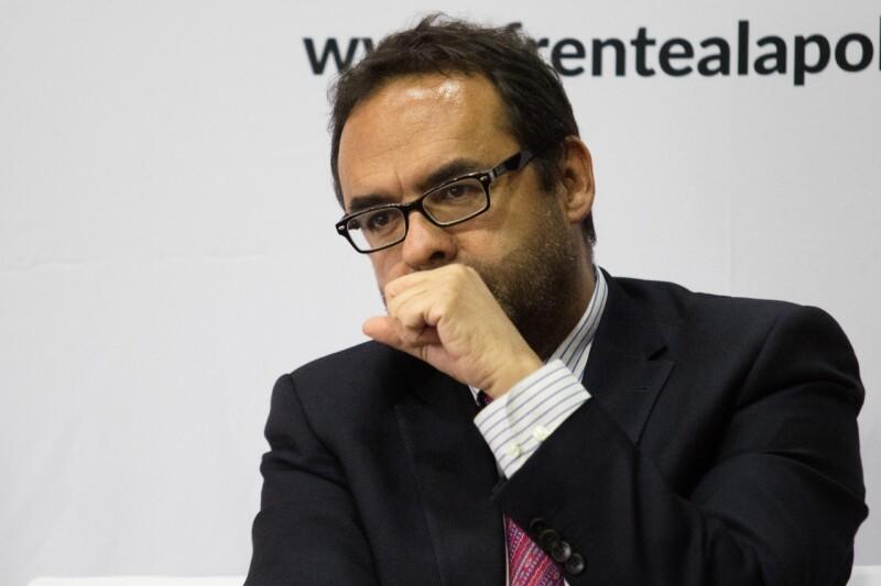 Gonzalo Hernández Licona
