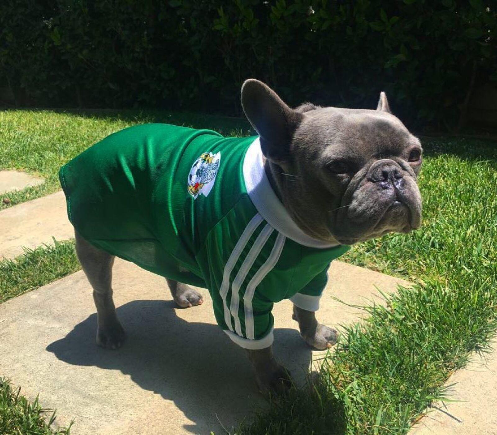 Popeye apoyando a la Selección Nacional, en la reciente Copa del Mundo