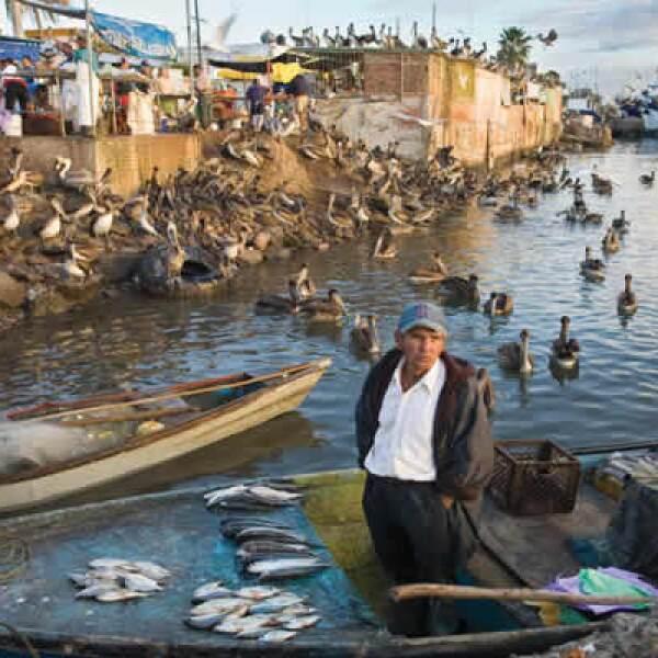 Brian Overcast Bishop captó la vendimia al pie del mar. La imagen de arriba muestra el mercado de mariscos de la  Isla de la Piedra, Mazatlán, Sinaloa. También obtuvo 12,000 dólares de premio.