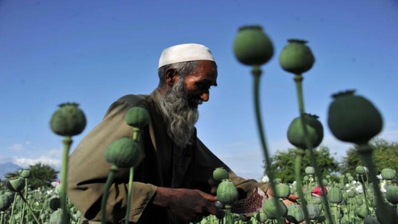 afganistán_opio