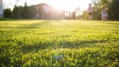 lawn at home. running children in blur. On a Sunny summer day.