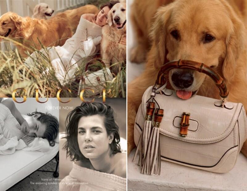 """La futura mamá posó tiernamente con varios animales para la reciente campaña publicitaria de la firma Gucci, """"Forever Now""""."""