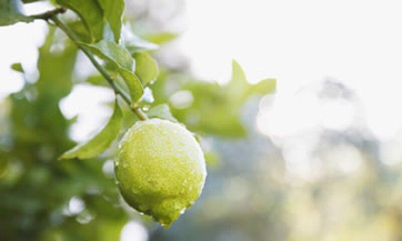 El limón llegó hasta los 50 pesos el kilogramo en algunos negocios. (Foto: Getty Images)