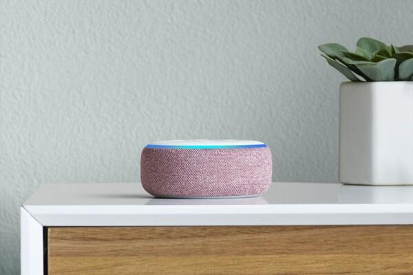 Amazon Echo Dot, Plum, on dresser