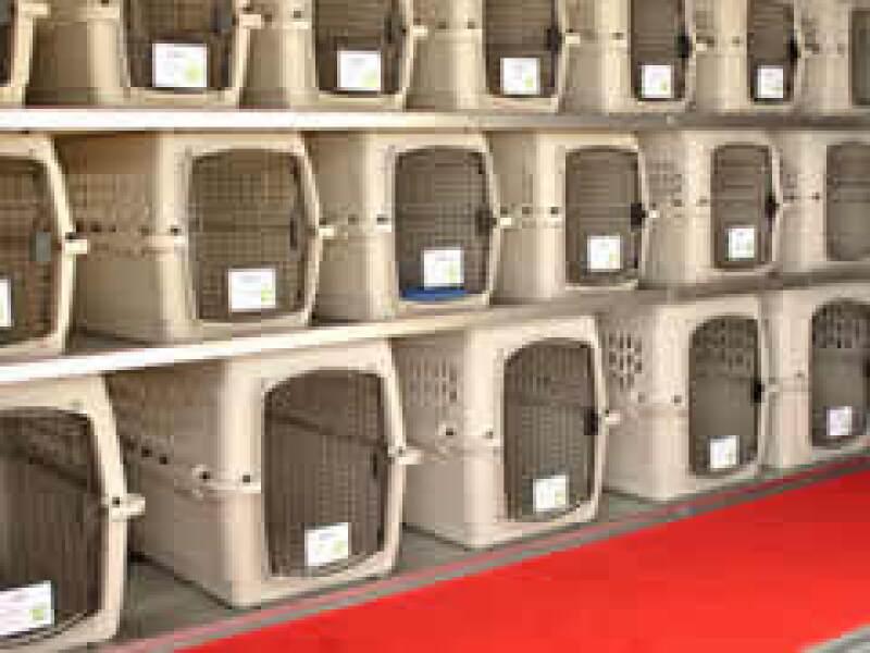 En lugar de asientos los aviones tienen jaulas para las mascotas. (Foto: Cortesía)