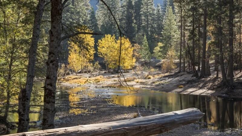 Las autoridades encargadas de parques en Estados Unidos prohibieron el uso de 'drones' en el Parque Nacional de Yosemite