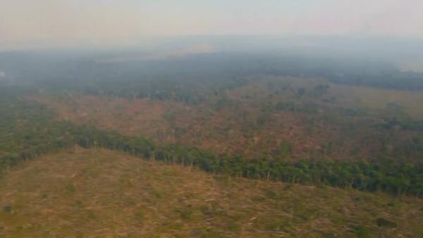 Peligro en el Amazonas